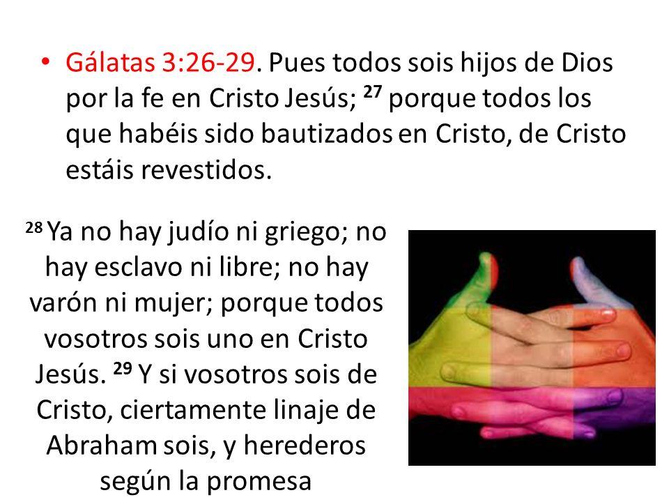 Gálatas 3:26-29. Pues todos sois hijos de Dios por la fe en Cristo Jesús; 27 porque todos los que habéis sido bautizados en Cristo, de Cristo estáis revestidos.