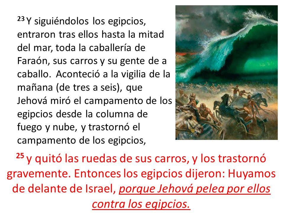 23 Y siguiéndolos los egipcios, entraron tras ellos hasta la mitad del mar, toda la caballería de Faraón, sus carros y su gente de a caballo. Aconteció a la vigilia de la mañana (de tres a seis), que Jehová miró el campamento de los egipcios desde la columna de fuego y nube, y trastornó el campamento de los egipcios,