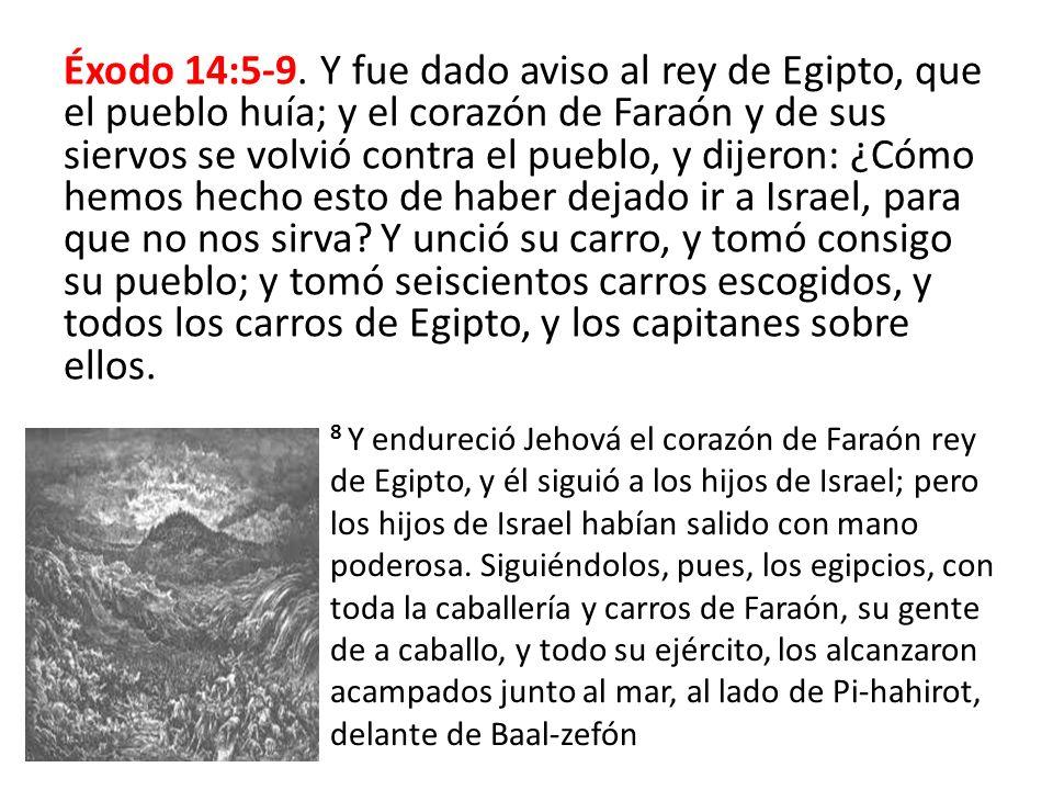 Éxodo 14:5-9. Y fue dado aviso al rey de Egipto, que el pueblo huía; y el corazón de Faraón y de sus siervos se volvió contra el pueblo, y dijeron: ¿Cómo hemos hecho esto de haber dejado ir a Israel, para que no nos sirva Y unció su carro, y tomó consigo su pueblo; y tomó seiscientos carros escogidos, y todos los carros de Egipto, y los capitanes sobre ellos.