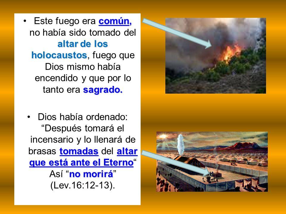 Este fuego era común, no había sido tomado del altar de los holocaustos, fuego que Dios mismo había encendido y que por lo tanto era sagrado.