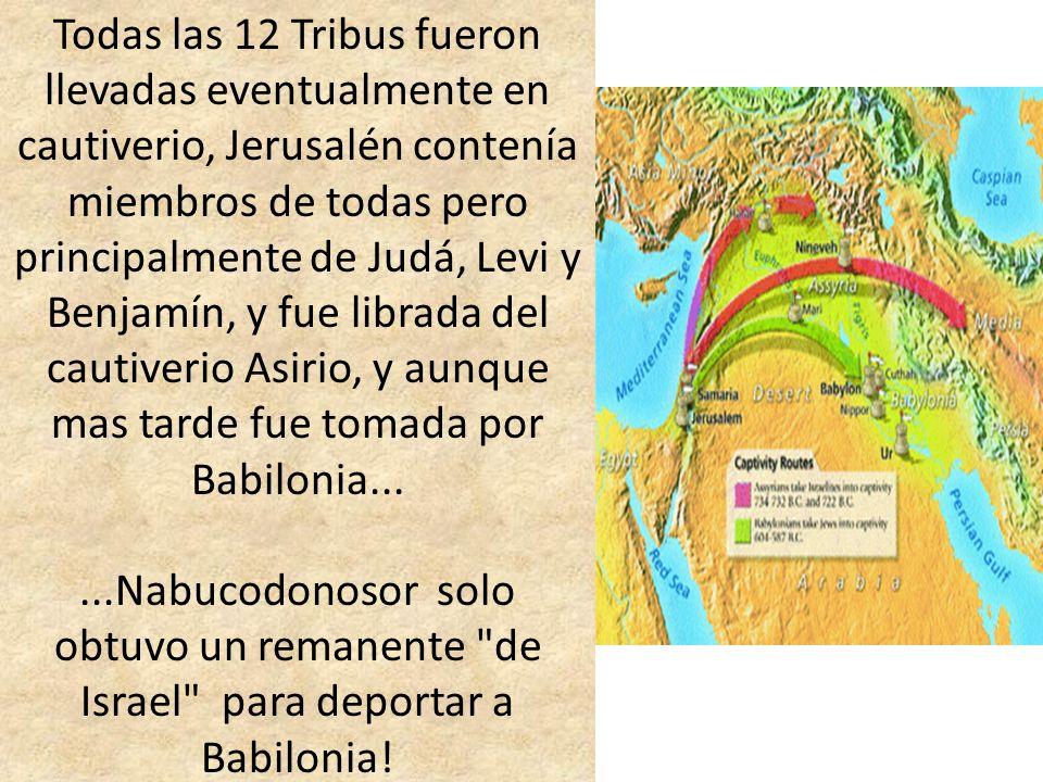 Todas las 12 Tribus fueron llevadas eventualmente en cautiverio, Jerusalén contenía miembros de todas pero principalmente de Judá, Levi y Benjamín, y fue librada del cautiverio Asirio, y aunque mas tarde fue tomada por Babilonia...
