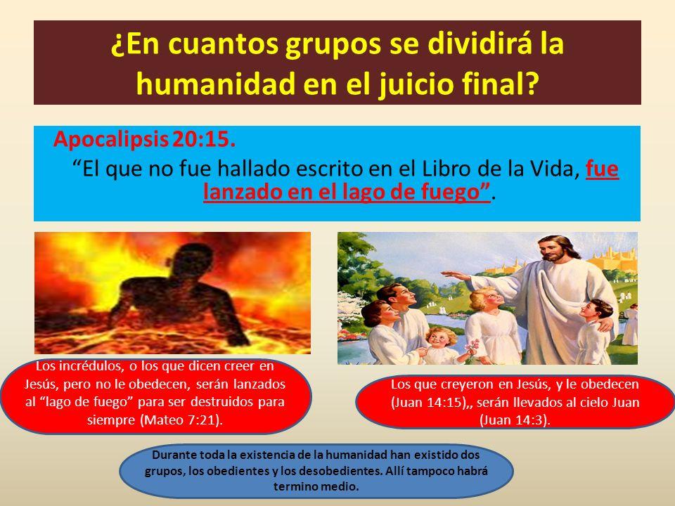 ¿En cuantos grupos se dividirá la humanidad en el juicio final