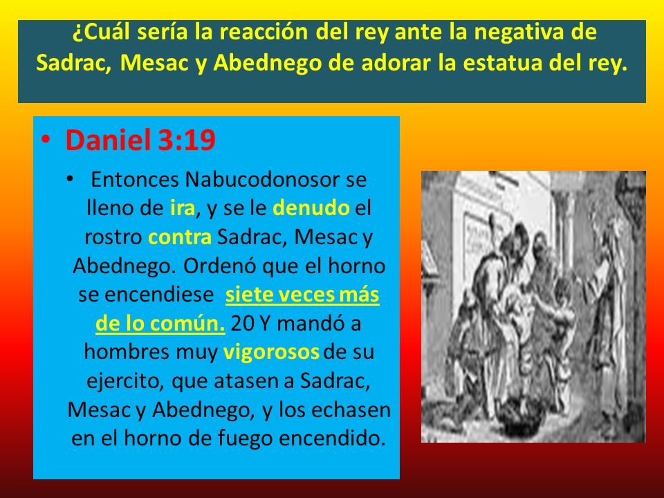 ¿Cuál sería la reacción del rey ante la negativa de Sadrac, Mesac y Abednego de adorar la estatua del rey.