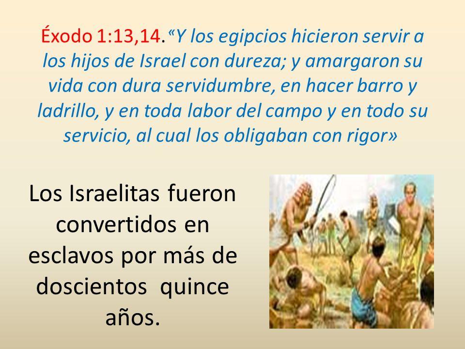Éxodo 1:13,14. «Y los egipcios hicieron servir a los hijos de Israel con dureza; y amargaron su vida con dura servidumbre, en hacer barro y ladrillo, y en toda labor del campo y en todo su servicio, al cual los obligaban con rigor»