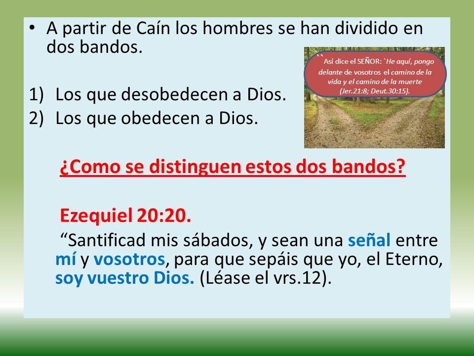 A partir de Caín los hombres se han dividido en dos bandos.