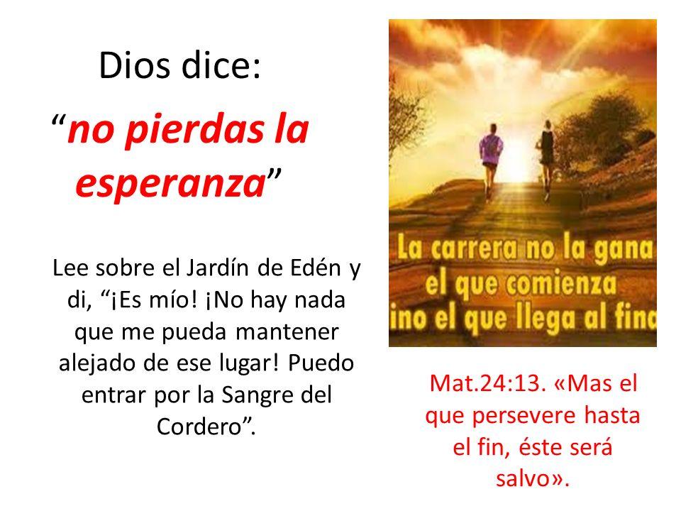 Dios dice: no pierdas la esperanza