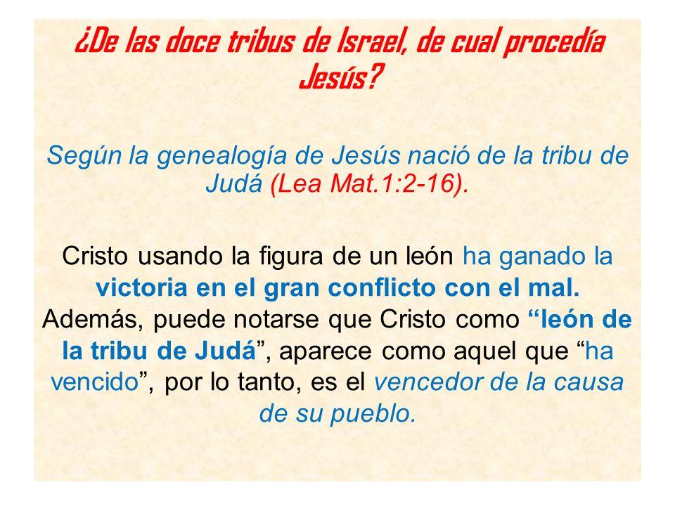 ¿De las doce tribus de Israel, de cual procedía Jesús