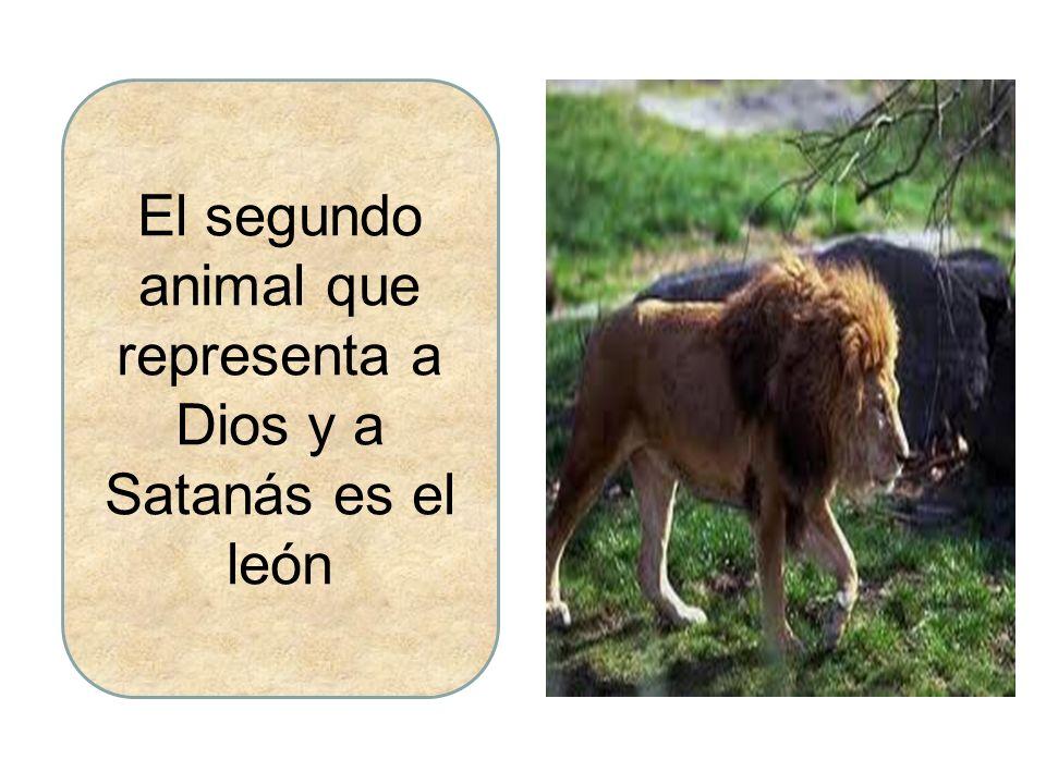 El segundo animal que representa a Dios y a Satanás es el león