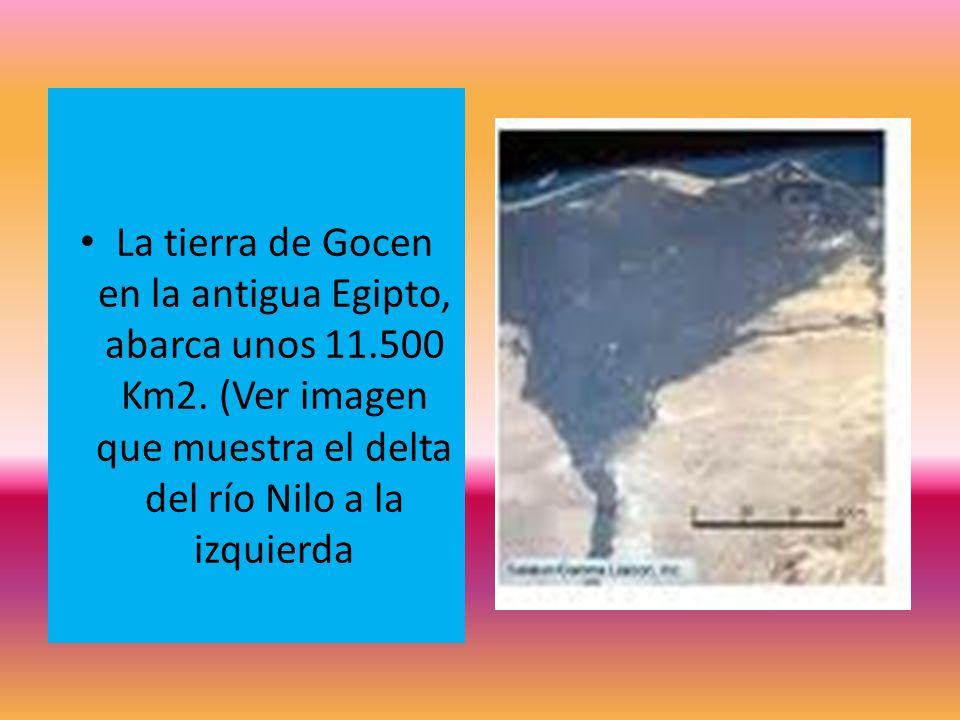 La tierra de Gocen en la antigua Egipto, abarca unos 11. 500 Km2