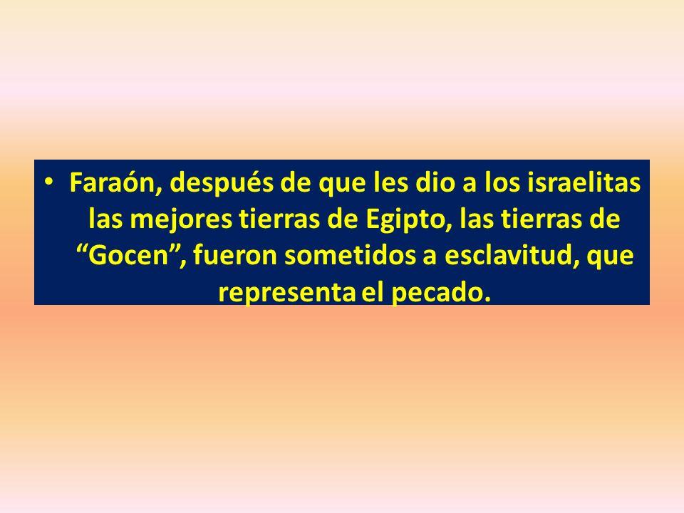 Faraón, después de que les dio a los israelitas las mejores tierras de Egipto, las tierras de Gocen , fueron sometidos a esclavitud, que representa el pecado.