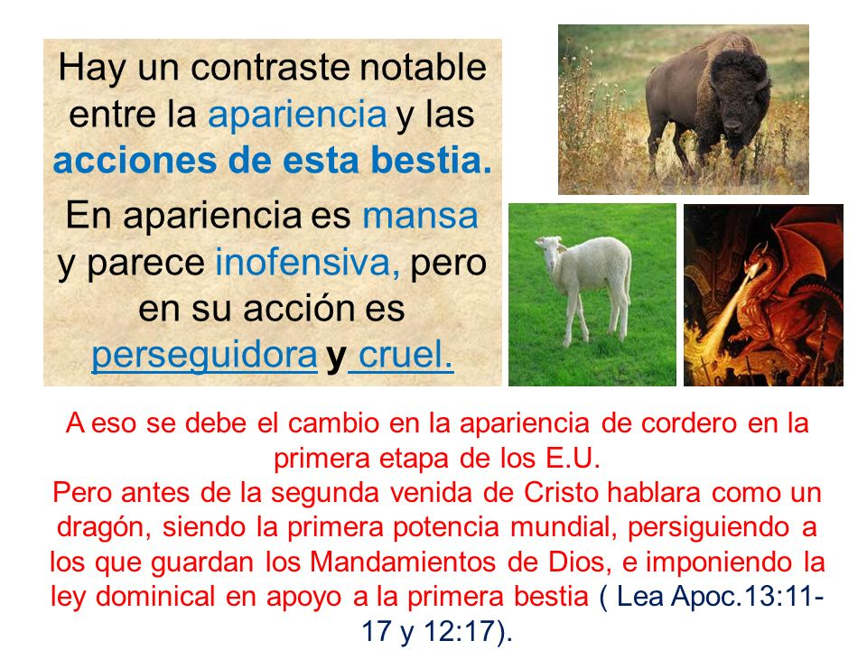 Hay un contraste notable entre la apariencia y las acciones de esta bestia.