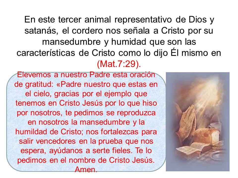 En este tercer animal representativo de Dios y satanás, el cordero nos señala a Cristo por su mansedumbre y humidad que son las características de Cristo como lo dijo Él mismo en (Mat.7:29).