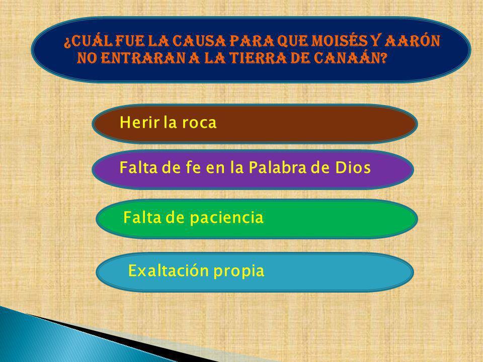 ¿Cuál fue la causa para que Moisés y Aarón no entraran a la tierra de Canaán