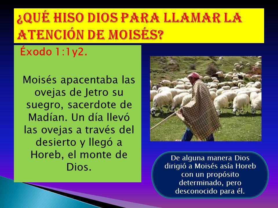 ¿Qué hiso Dios para llamar la atención de Moisés