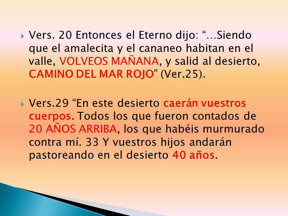 Vers. 20 Entonces el Eterno dijo: …Siendo que el amalecita y el cananeo habitan en el valle, VOLVEOS MAÑANA, y salid al desierto, CAMINO DEL MAR ROJO (Ver.25).