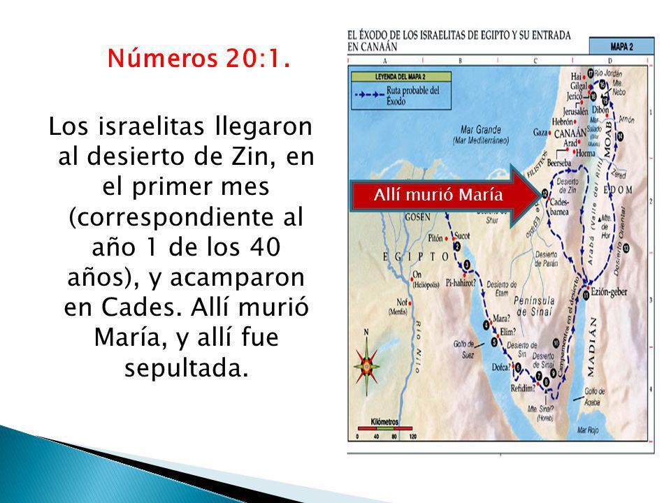 Números 20:1. Los israelitas llegaron al desierto de Zin, en el primer mes (correspondiente al año 1 de los 40 años), y acamparon en Cades. Allí murió María, y allí fue sepultada.