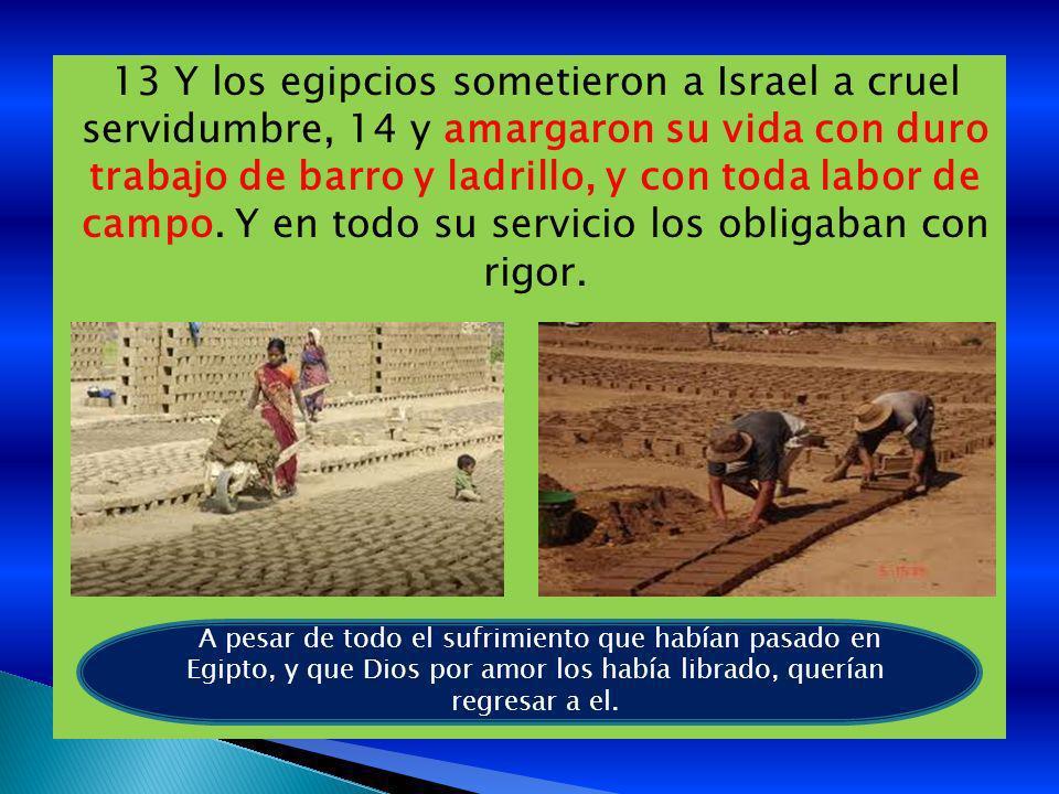 13 Y los egipcios sometieron a Israel a cruel servidumbre, 14 y amargaron su vida con duro trabajo de barro y ladrillo, y con toda labor de campo. Y en todo su servicio los obligaban con rigor.