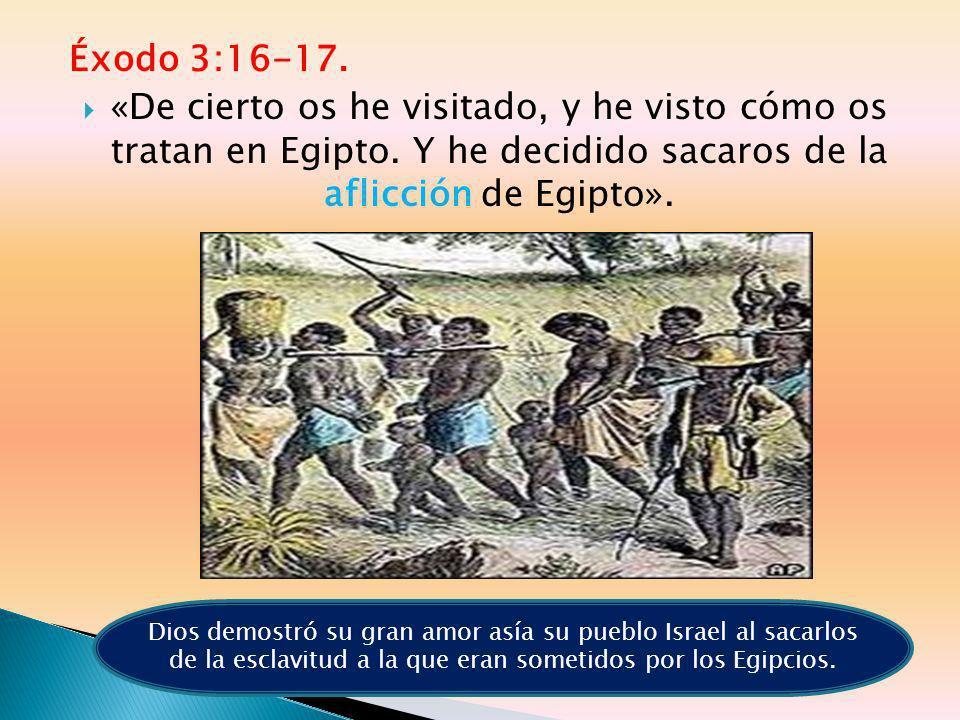 Éxodo 3:16-17. «De cierto os he visitado, y he visto cómo os tratan en Egipto. Y he decidido sacaros de la aflicción de Egipto».