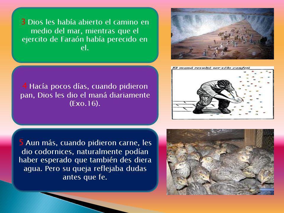 3 Dios les había abierto el camino en medio del mar, mientras que el ejercito de Faraón había perecido en el.