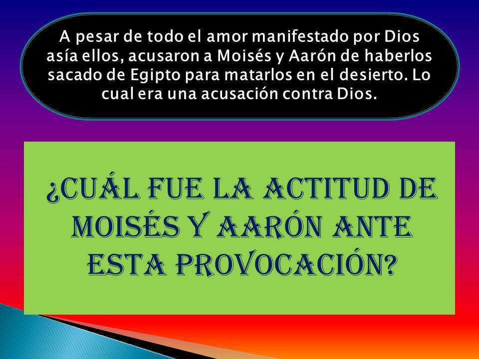 ¿cuál fue la actitud de Moisés y Aarón ante esta provocación