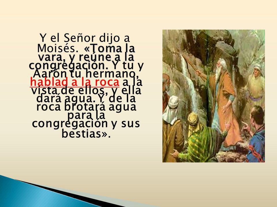 Y el Señor dijo a Moisés. «Toma la vara, y reúne a la congregación