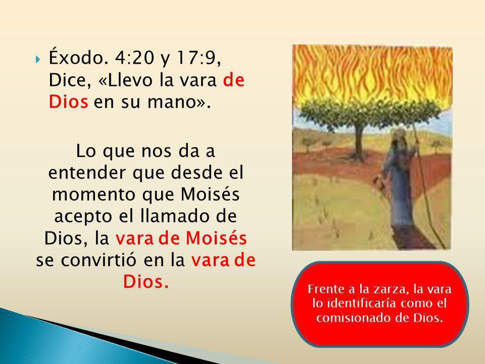 Éxodo. 4:20 y 17:9, Dice, «Llevo la vara de Dios en su mano».