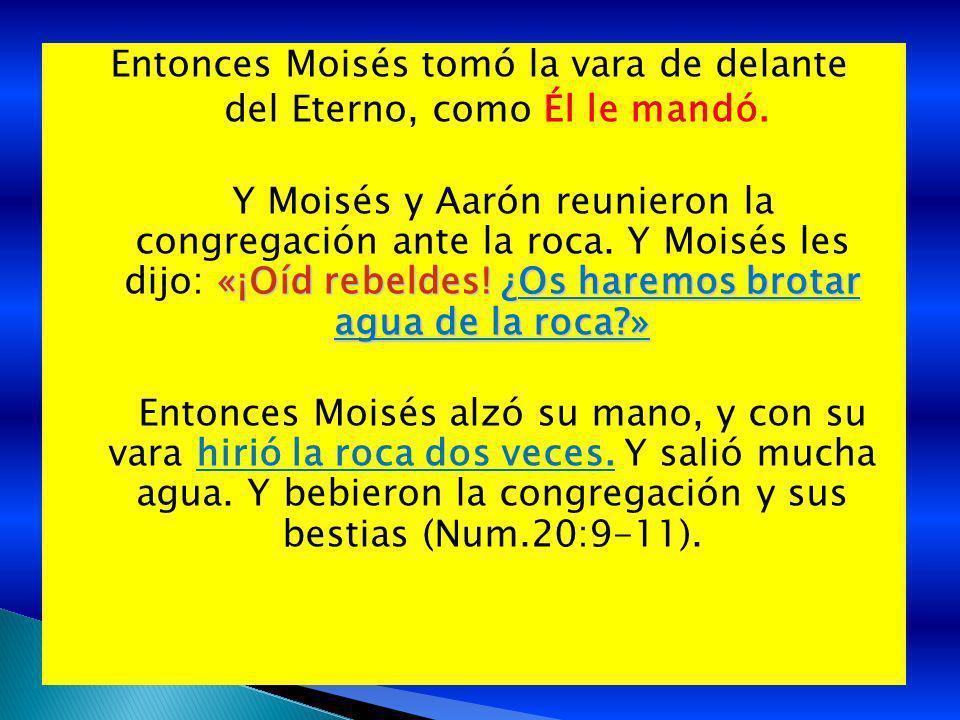 Entonces Moisés tomó la vara de delante del Eterno, como Él le mandó