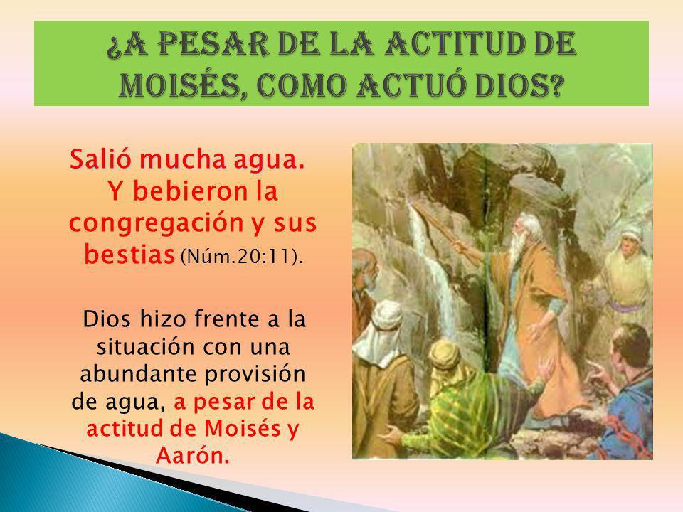 ¿A pesar de la actitud de Moisés, como actuó Dios