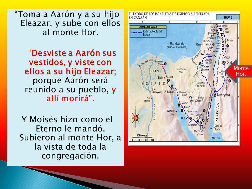 Toma a Aarón y a su hijo Eleazar, y sube con ellos al monte Hor.