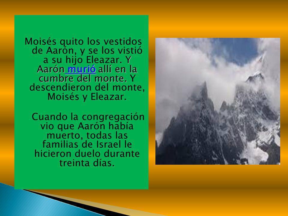 Moisés quito los vestidos de Aarón, y se los vistió a su hijo Eleazar