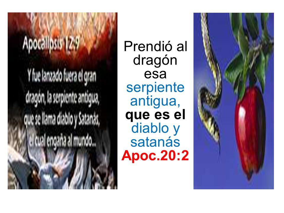 Prendió al dragón esa serpiente antigua, que es el diablo y satanás Apoc.20:2