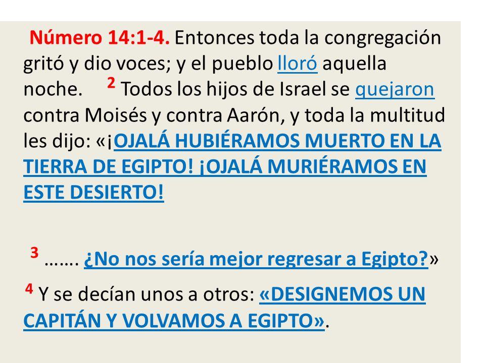 Número 14:1-4. Entonces toda la congregación gritó y dio voces; y el pueblo lloró aquella noche.