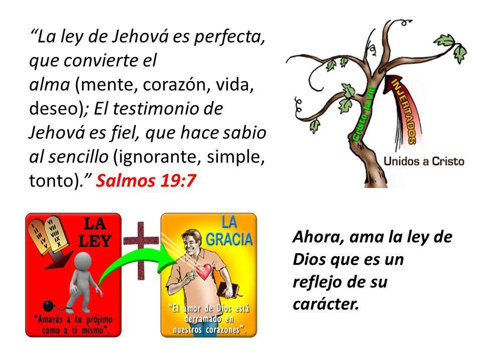 La ley de Jehová es perfecta, que convierte el alma (mente, corazón, vida, deseo); El testimonio de Jehová es fiel, que hace sabio al sencillo (ignorante, simple, tonto). Salmos 19:7