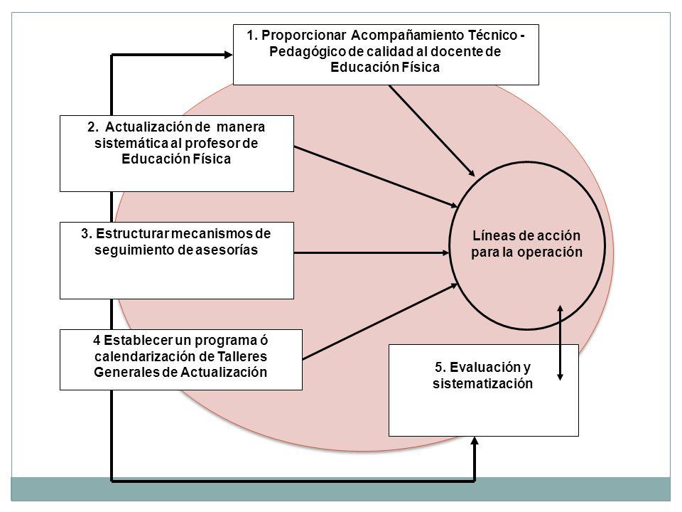 Líneas de acción para la operación