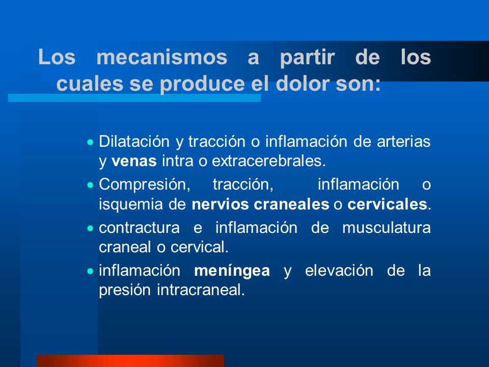 Los mecanismos a partir de los cuales se produce el dolor son: