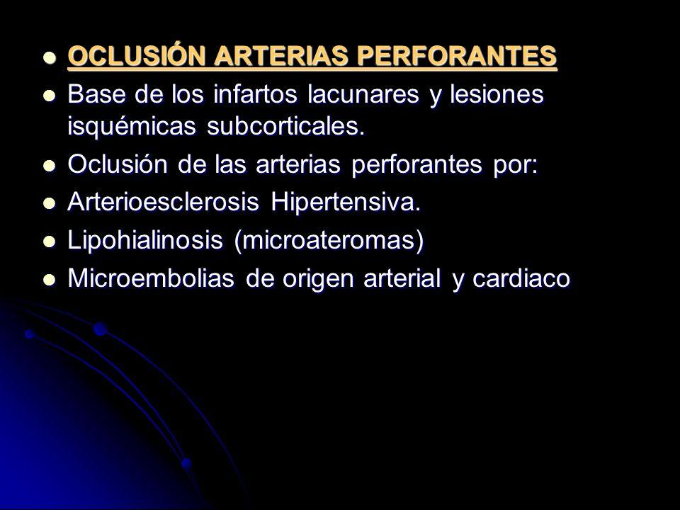 OCLUSIÓN ARTERIAS PERFORANTES