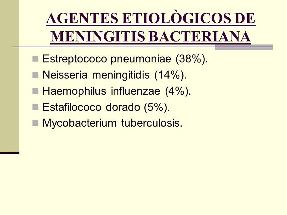 AGENTES ETIOLÒGICOS DE MENINGITIS BACTERIANA