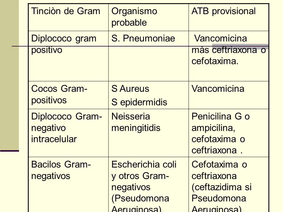 Tinciòn de Gram Organismo probable. ATB provisional. Diplococo gram positivo. S. Pneumoniae. Vancomicina màs ceftriaxona o cefotaxima.