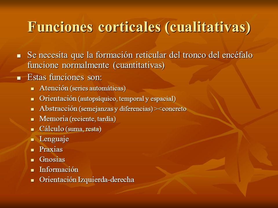 Funciones corticales (cualitativas)