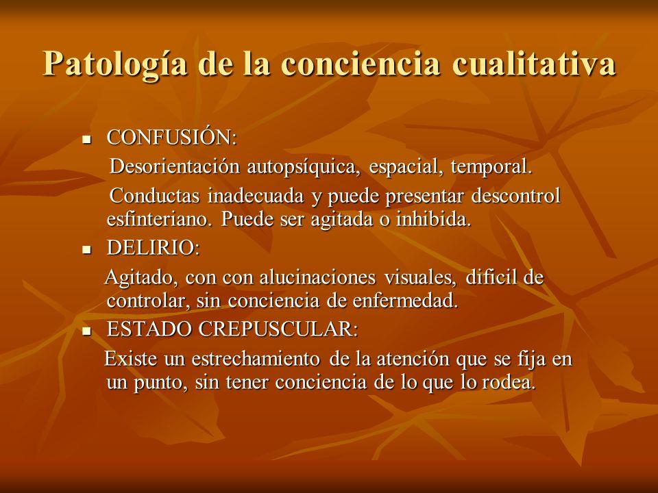 Patología de la conciencia cualitativa