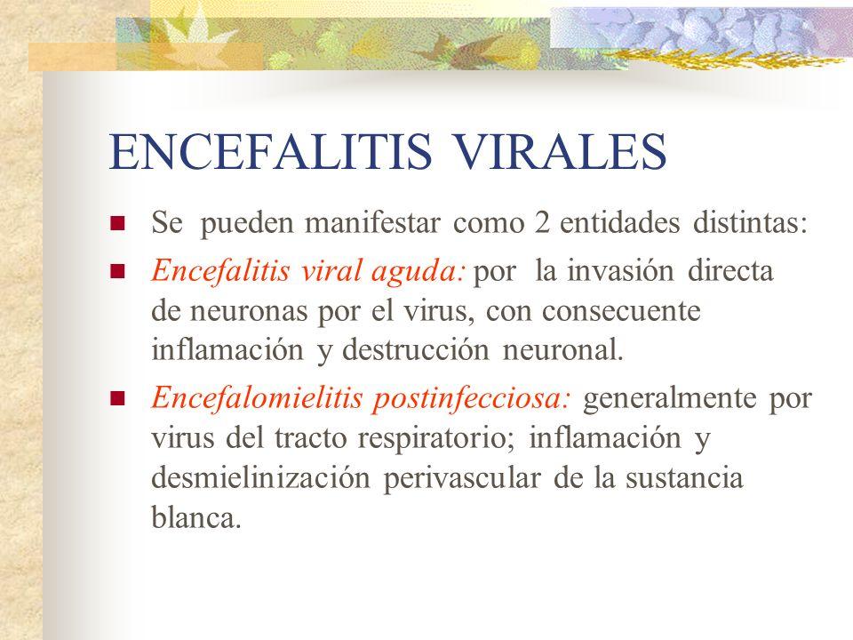 ENCEFALITIS VIRALES Se pueden manifestar como 2 entidades distintas:
