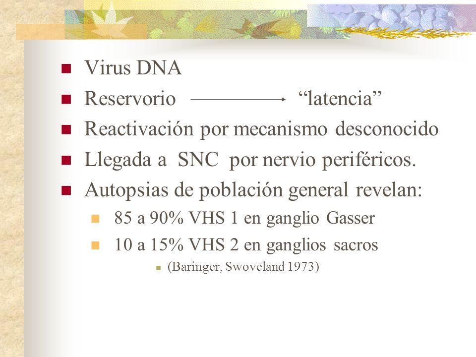 Reservorio latencia Reactivación por mecanismo desconocido