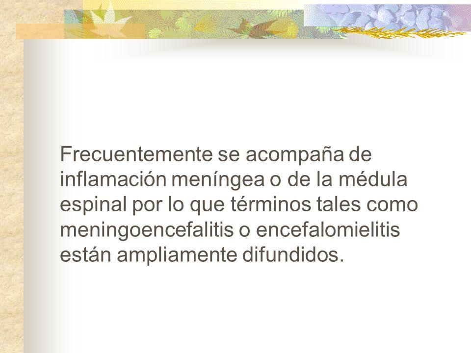 Frecuentemente se acompaña de inflamación meníngea o de la médula espinal por lo que términos tales como meningoencefalitis o encefalomielitis están ampliamente difundidos.