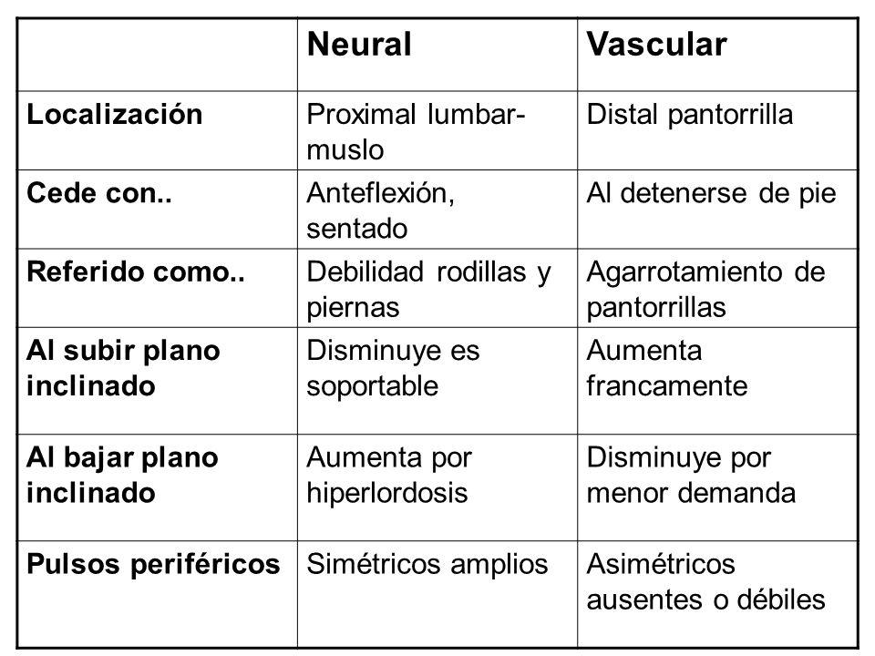 Neural Vascular Localización Proximal lumbar-muslo Distal pantorrilla