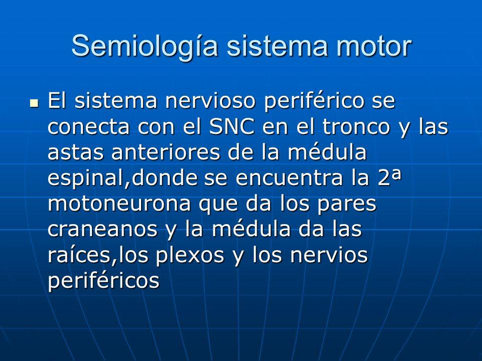 Semiología sistema motor