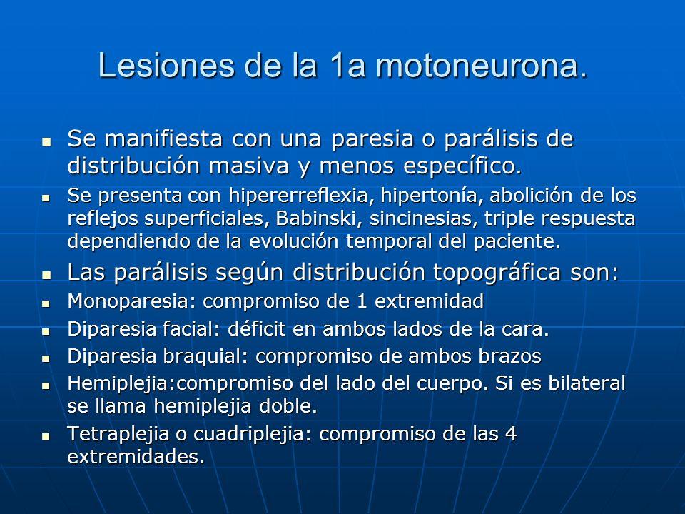 Lesiones de la 1a motoneurona.
