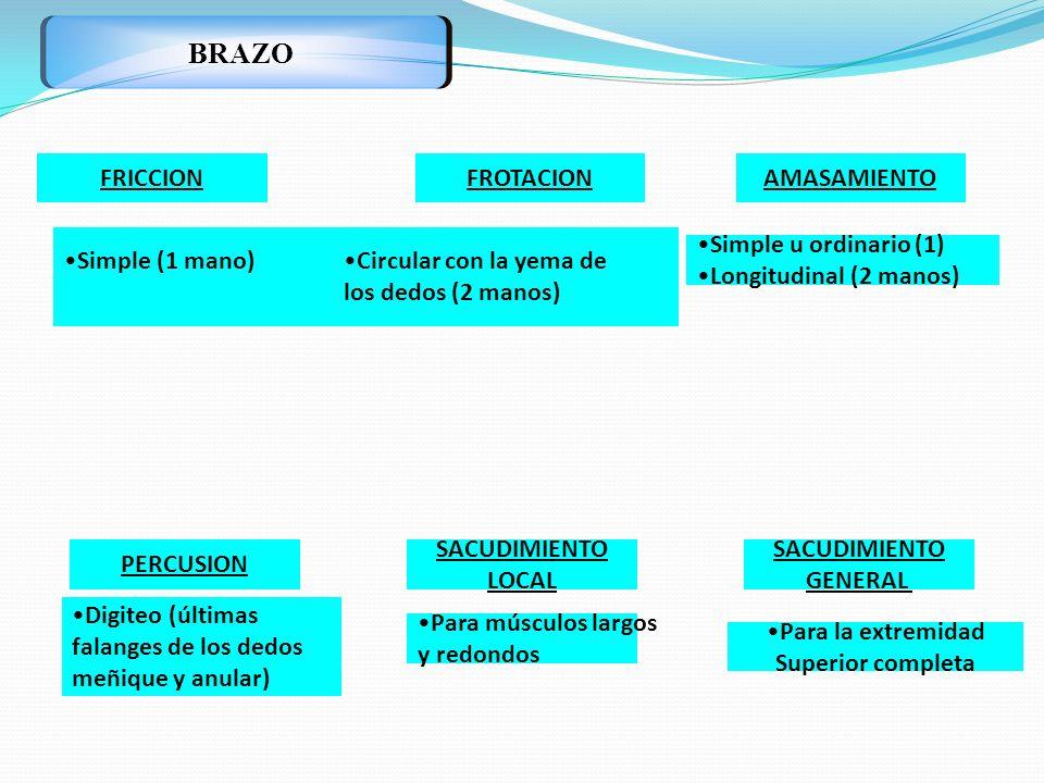 BRAZO FRICCION FROTACION AMASAMIENTO Simple (1 mano)