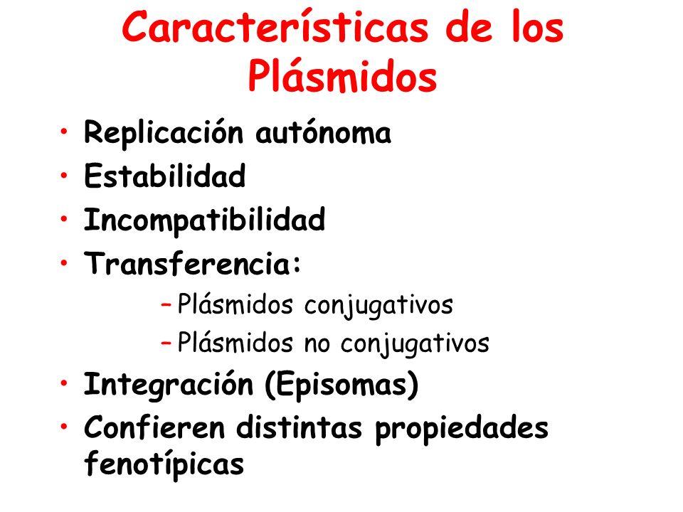 Características de los Plásmidos