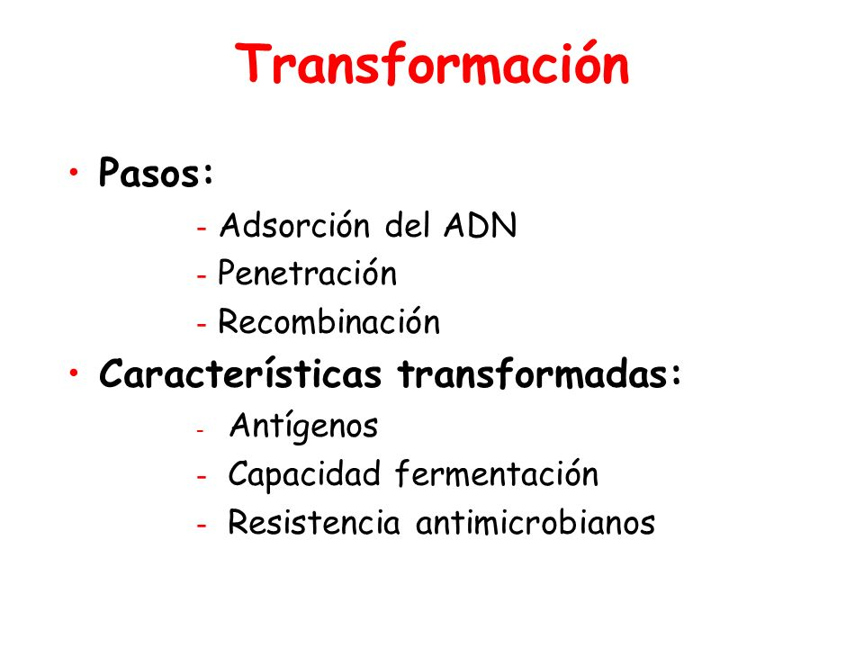 Transformación Pasos: Características transformadas: Adsorción del ADN
