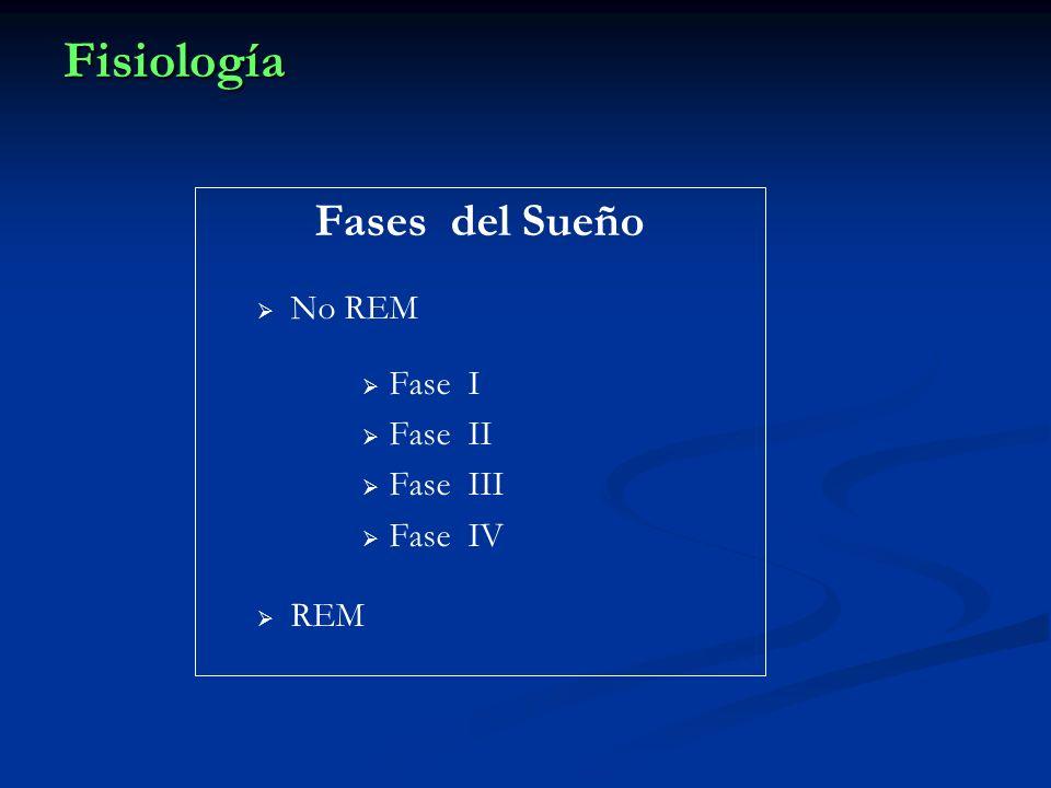 Fisiología Fases del Sueño No REM Fase I Fase II Fase III Fase IV REM
